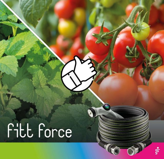 Associations are very useful for consistently healthy plants: placing some plants close to each other brings them mutual advantages. Find out which plants should be close together and why. 👉 Lemon balm improves the growth and health of tomatoes. 🍅  #FITT #FITTgardeningideas #FITTForce #poweryourjob #watering #gardeninspiration #gardeningtips #gardeninglife #gardeninglove #gardeningisfun #gardeningismytherapy #gardeningknowhow #gardeninggoals #gardeningmeakesmehappy #companionplanting #tomatoes #lemonbalm #melissa